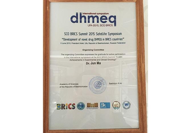 乌法金砖国家DHMEQ科技峰会